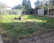 garden clear 4